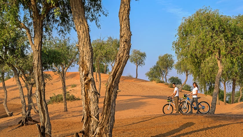 The Ritz Carlton Ras Al Khaimah, Al Wadi Desert, Bicycle Trail